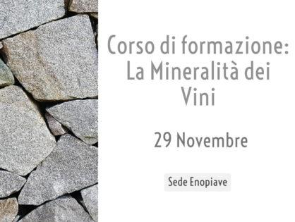 La mineralità dei vini